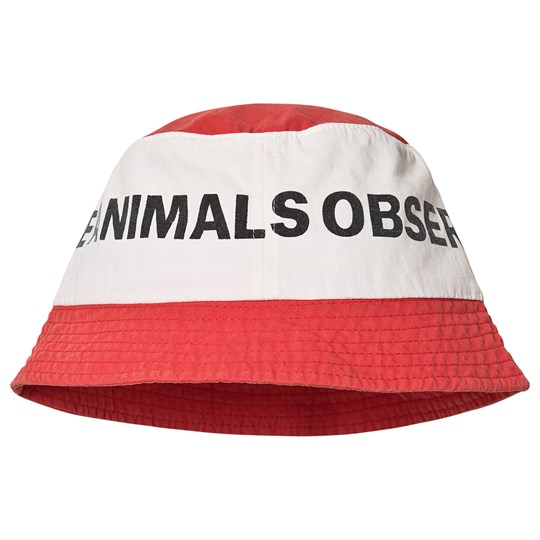 The Animals Observatory Starfish Hat Red Logo/The Animals 53 cm RED LOGO THE ANIMALS