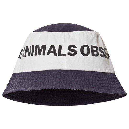 The Animals Observatory Starfish Hat Blue Logo/The Animals 53 cm BLUE LOGO THE ANIMALS
