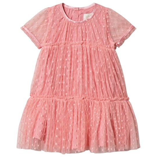 Creamie Tulle Dress Pink Icing Pink icing