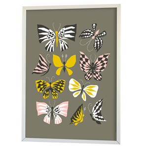 Image of Littlephant Poster, Butterfly Family, Grey One Size (856988)