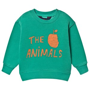 Image of The Animals Observatory Bear Baby Sweatshirt Green The Animals 12 mdr (1630257)