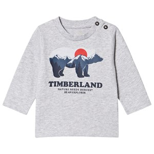 Image of Timberland Bear T-shirt Gråmeleret 2 years (1617042)