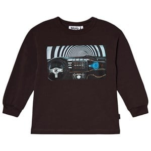Image of Molo Rin T-shirt Brown Darkness 152 cm (11-12 år) (1634138)
