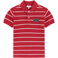 Lacoste Red Striped Pique Ribbed Collar Polo