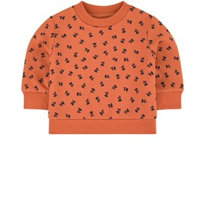 Image of Tinycottons Graphic sweatshirt 9 mdr (1685899)
