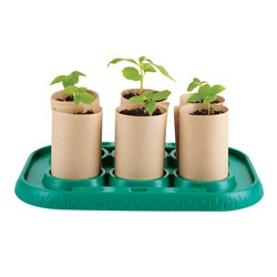 Hape Growing Gardeners Greenhouse Play Set
