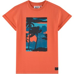 Molo Randon T-Shirt Surf