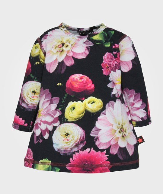 Molo Caroline Dress LS Black Flowering Multi