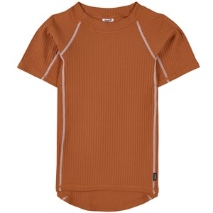Image of Lindberg Aten T-shirt Brown 86/92 cm (1762388)