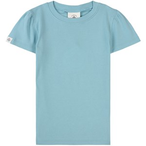 Image of Gullkorn Design Anemone T-shirt Mayblue 104 cm (3-4 år) (1798592)