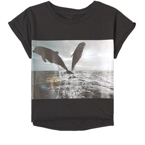 Image of How To Kiss A Frog Dolphin T-shirt Sort 2 år (1747606)