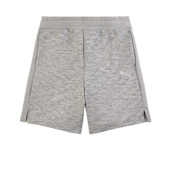 Puma EVO Junior Shorts Gray