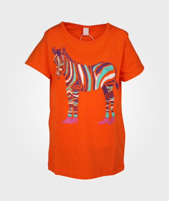 Esprit Zebra T-shirt Blazing Orange Orange