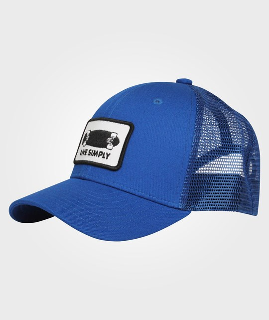 681230c1310 Kids Trucker Hat Viking Blue - Patagonia - Babyshop